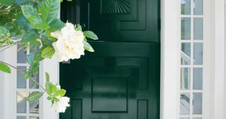 Green With Envy Dutch Style Door